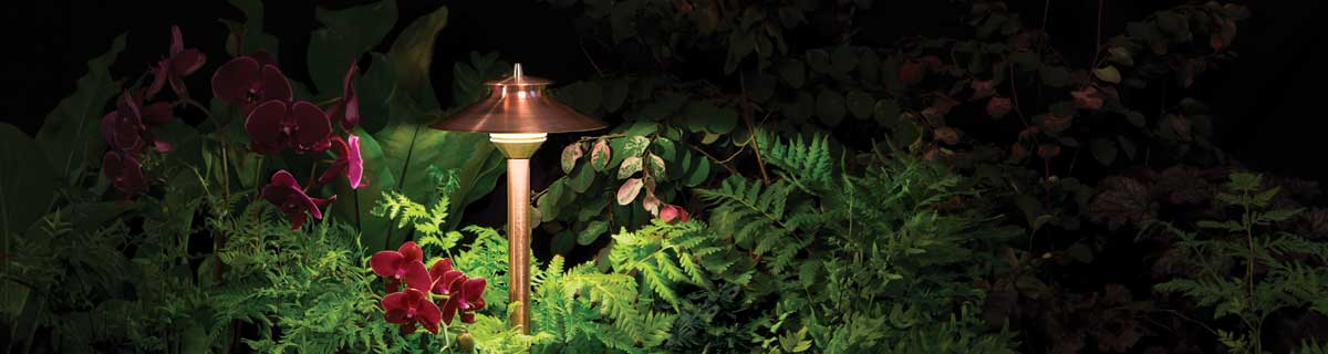 Landscape lighting on a flower bed and garden.