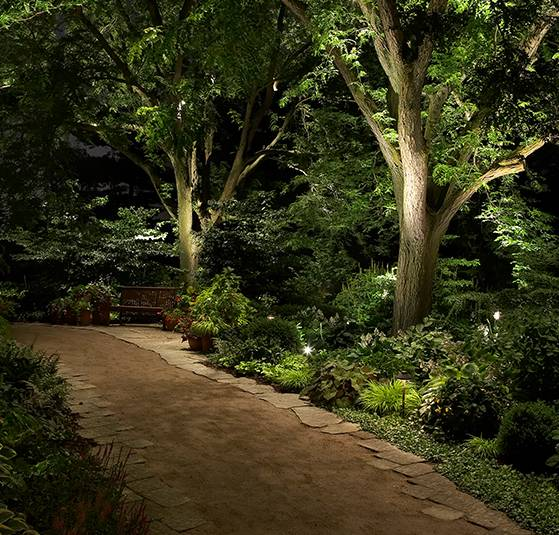 Example of pathway lighting on this large pathway.