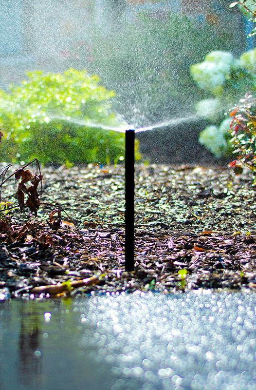 american-national-sprinkler-and-lighting-sprinkler-gallery-24
