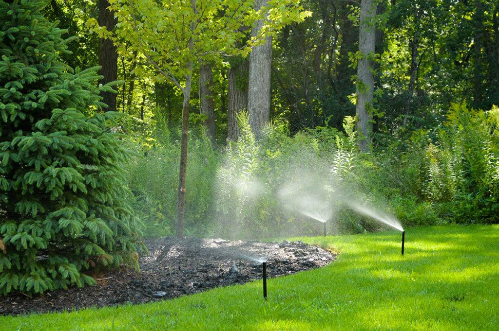 american-national-sprinkler-and-lighting-sprinkler-gallery-8