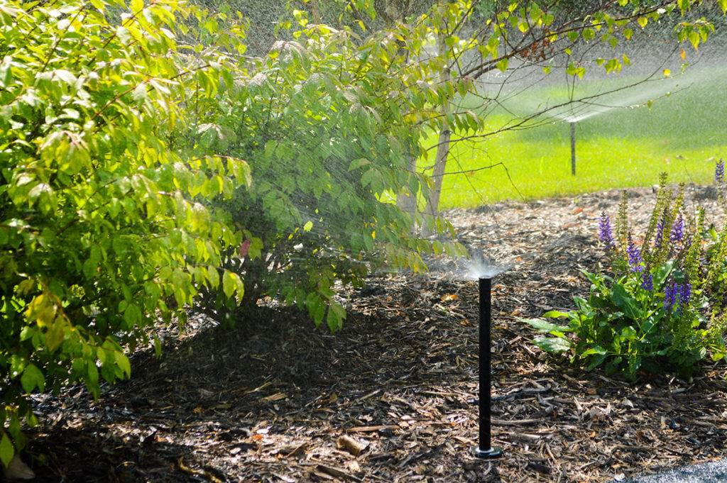 american-national-sprinkler-and-lighting-sprinkler-gallery-9