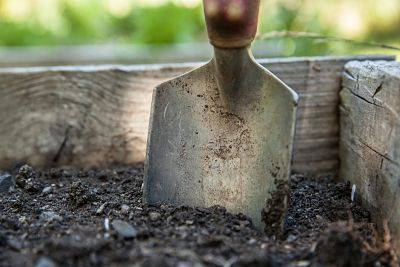 Shovel in dirt ready to dig