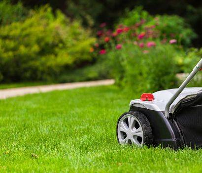 Green lawn with a lawn mower.