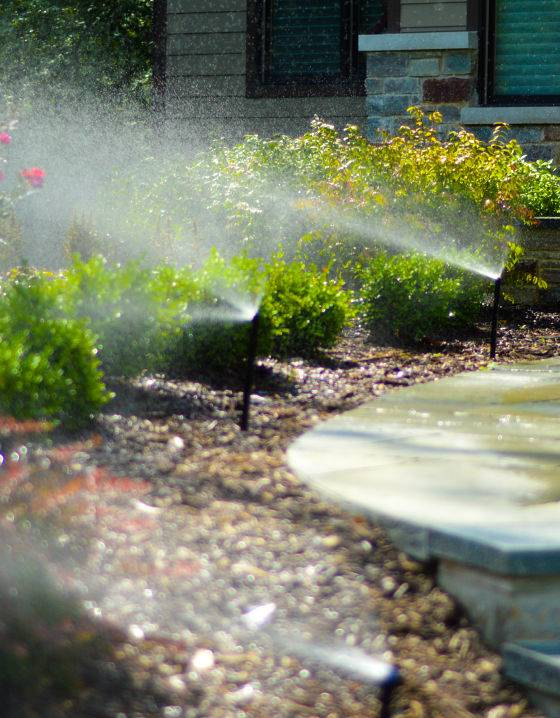Front yard sprinkler heads in action from a lawn irrigation company.