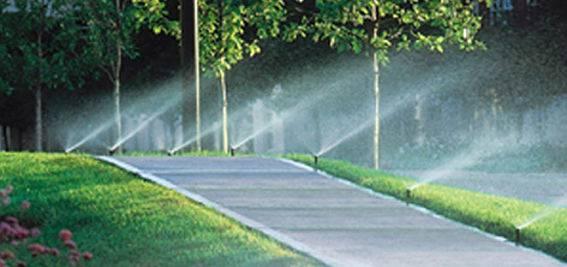 Sprinkler heads set up by American National sprinkler company.