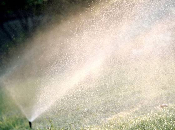 Sprinkler installation cost - up close sprinkler in action.