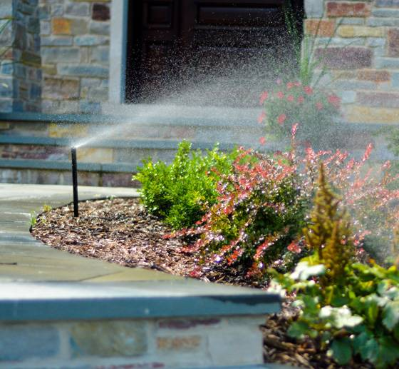 Sprinkler system companies like American Sprinkler can install sprinklers in your front yard.