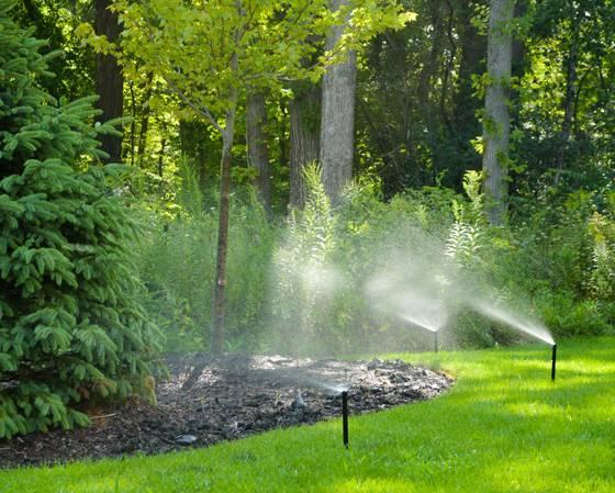 Sprinkler system design by Kinnucan, two sprinklers in action.
