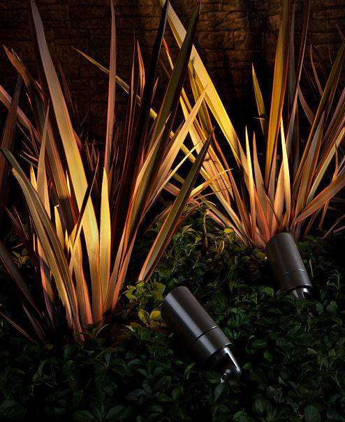 Landscape lighting contractors from American National installed plant lights.
