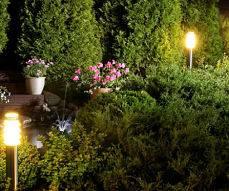Beautiful outdoor lighting by American National - an illuminated garden.