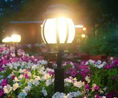 LED lighting installation garden lighting.