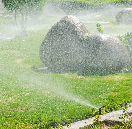 Automatic watering system sprinkler head near a rock watering the landscape.