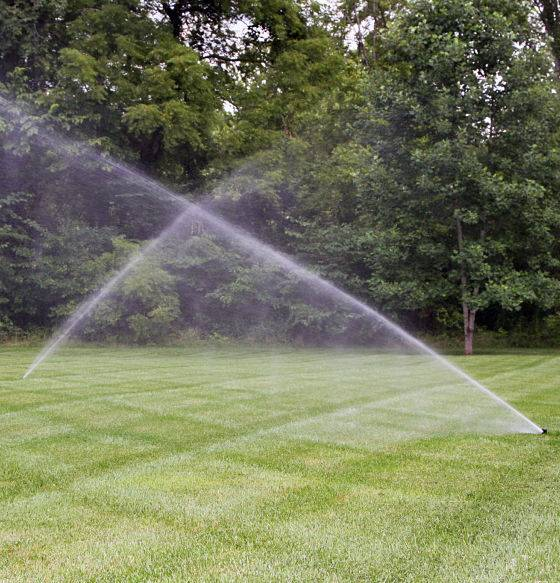 Automatic watering system in action.