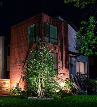 Architectural lighting design - lighting in front of home highlighting a bush.