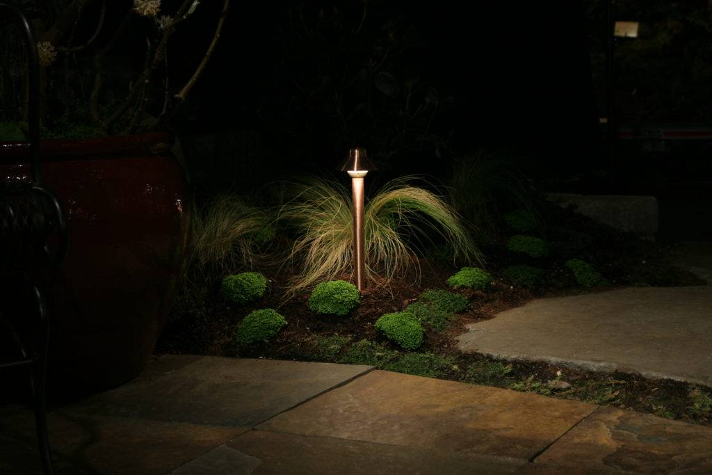 American National backyard lighting on a plant.