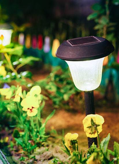 Our low voltage landscape lighting systems can illuminate plants, trees, and paths.