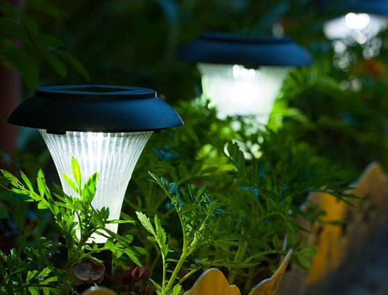 Landscape lighting service is offered by American National Sprinkler & Lighting - solar lighting in a garden.