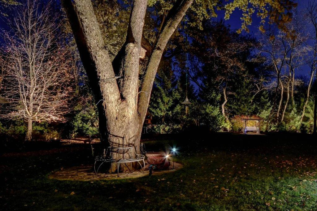 American National Sprinkler & Lighting - automatic lighting system illuminating a big tree and bench in the backyard.