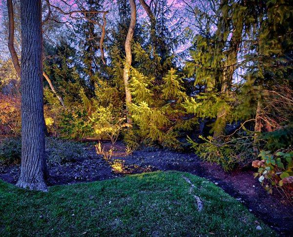 American National Sprinkler & Lighting - best voltage low landscape lighting - landscape bed with low voltage landscape lighting.