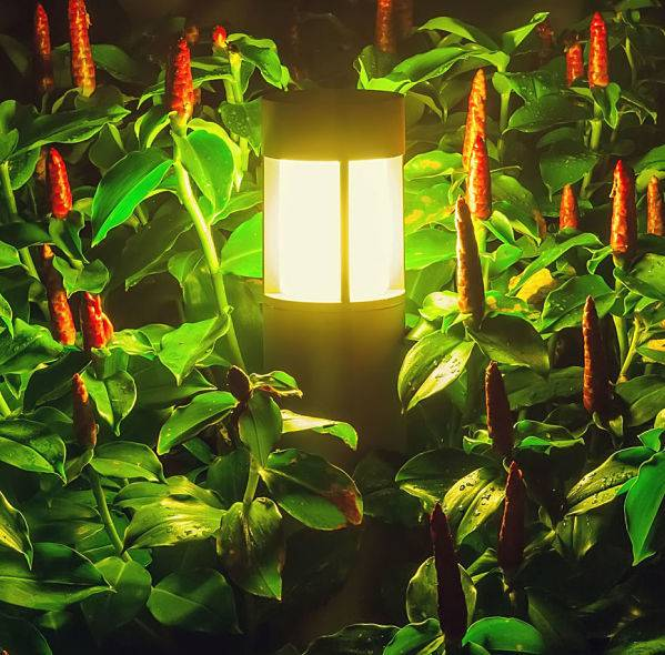 American National Sprinkler & Lighting - there are many options for landscape lighting for plants - close up of landscape lighting for plants on a red flower bed.
